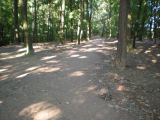 0.Turniej-Drzonkow_Zielona-Park-026.jpg